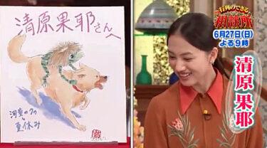 清原果耶が行列でオススメのアニメ「河童のクゥと夏休み」はどんな作品?