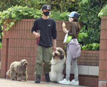 木村拓哉と工藤静香夫妻の愛犬の種類は?お散歩コースはどこ?